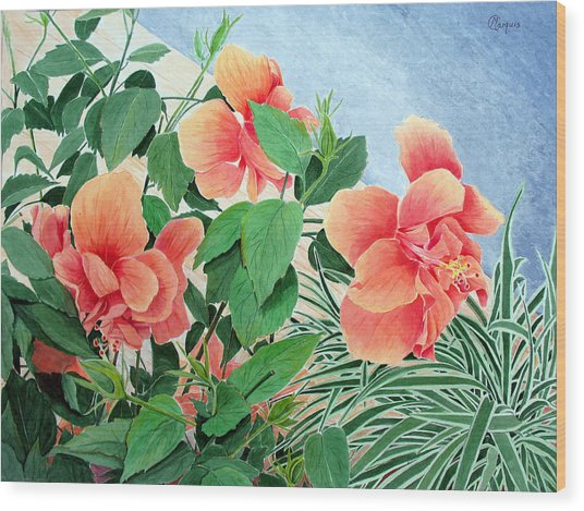 Giant Hibiscus Wood Print by Colleen Marquis