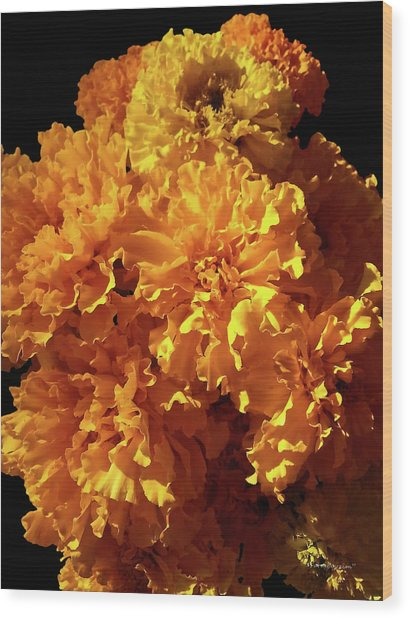 Giant Marigolds Wood Print