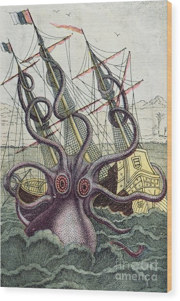 Giant Octopus Wood Print
