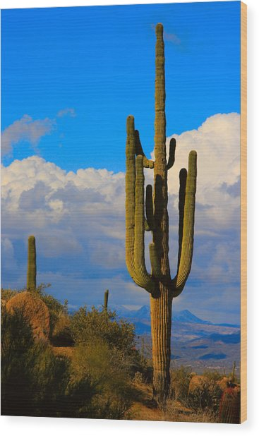 Giant Saguaro In The Southwest Desert  Wood Print