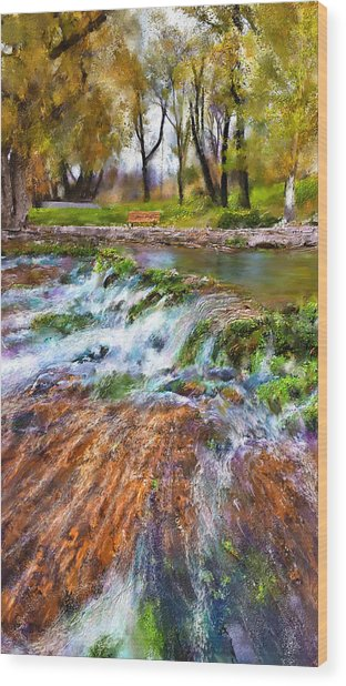 Giant Springs 2 Wood Print