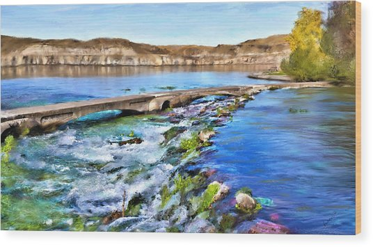 Giant Springs 3 Wood Print