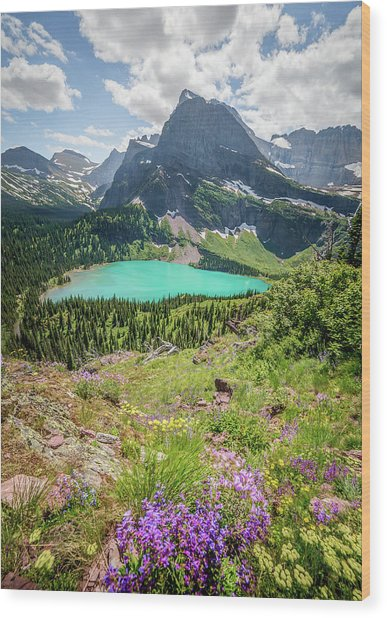 Ginnell Lake Overlook / Glacier National Park  Wood Print