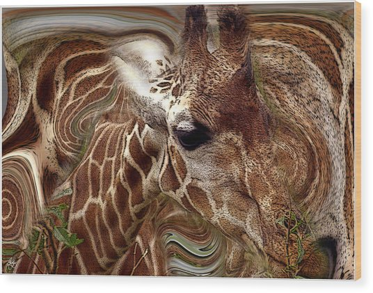 Giraffe Dreams No. 1 Wood Print