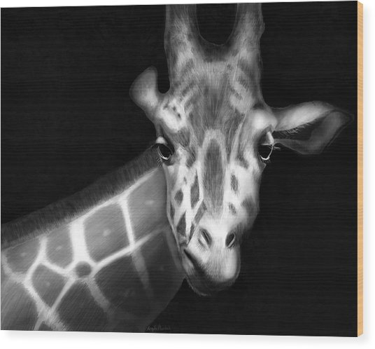 Giraffe In Black And White Wood Print