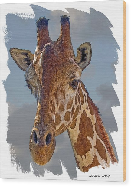 Giraffe Wood Print by Larry Linton