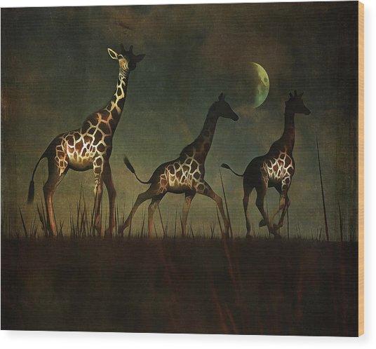 Giraffes Fleeing Wood Print
