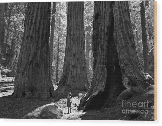 Girl And Giants Wood Print