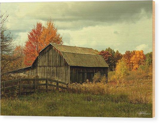 Fall Has Always Been My Favorite Season. Wood Print