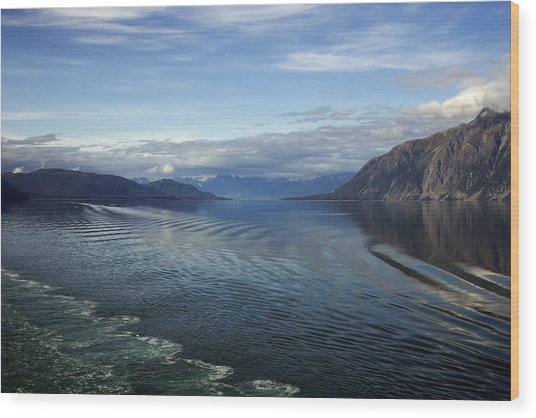 Glacier Bay 7 Wood Print