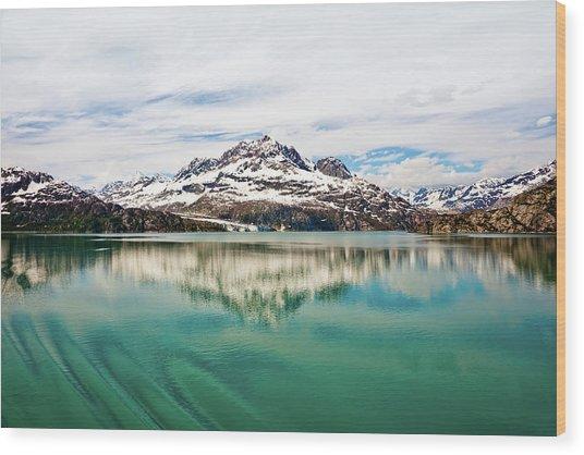 Glacier Bay In Alaska Wood Print