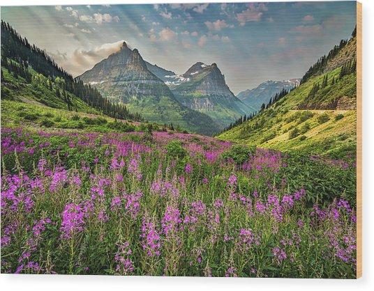 Glacier Meadow Wood Print