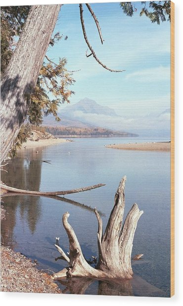 Glacier National Park 3 Wood Print
