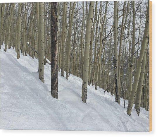 Gladed Run Wood Print