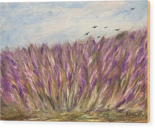Gladiolus Field Wood Print