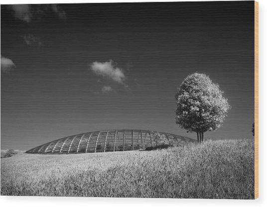Glasshouse At The National Botanic Gardens, Wales Wood Print