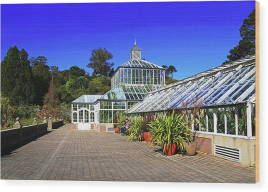 Glasshouse Entrance Wood Print