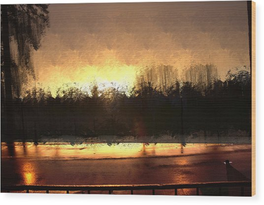 Glassy Dawn Wood Print
