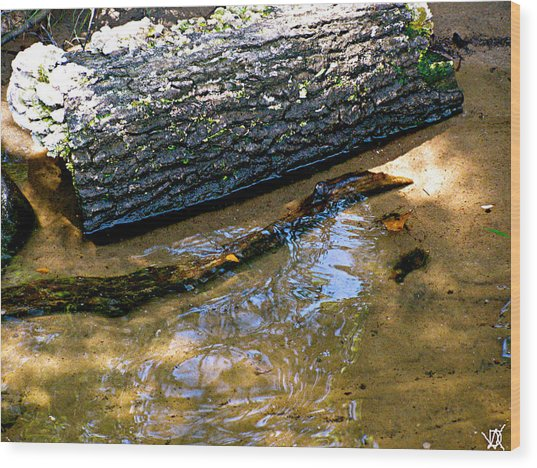Glassy Water Wood Print by Debra     Vatalaro