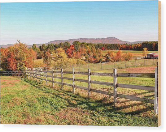 Glendale Road View In The Fall Wood Print