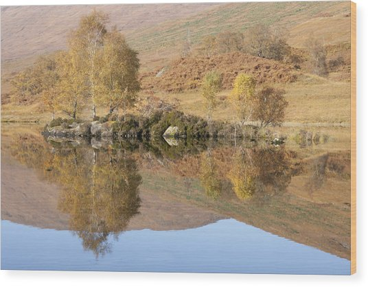 Wood Print featuring the photograph Glengarry Reflection by Karen Van Der Zijden