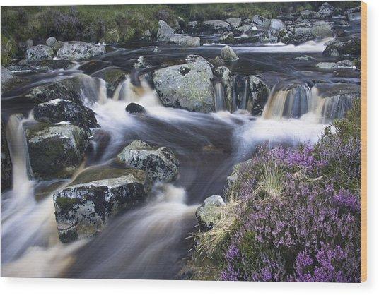 Glenmacnass I Wood Print by Gary Rowe