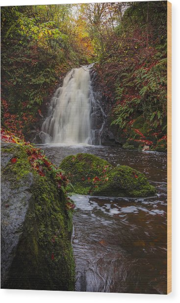 Gleno Falls Portrait View Wood Print