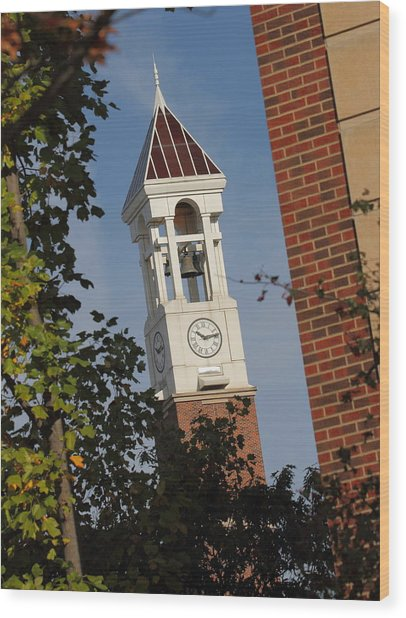 Glimpse Of The Bell Tower Wood Print
