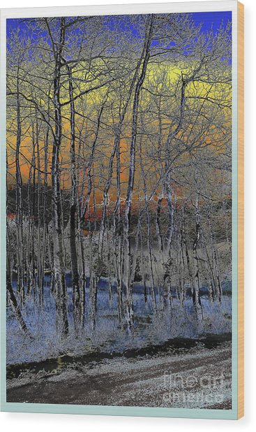 Glowing Aspens At Dusk Wood Print