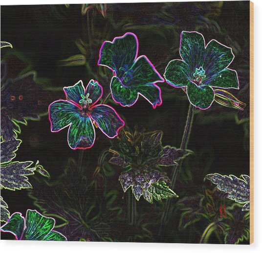 Glowing Flowers Wood Print by Scott Gould