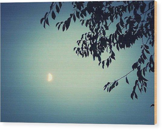 Glowing Moon  Wood Print