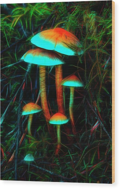 Glowing Mushrooms Wood Print