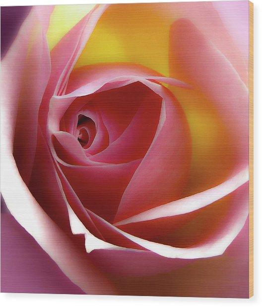 Glowing Rose Hdr Wood Print