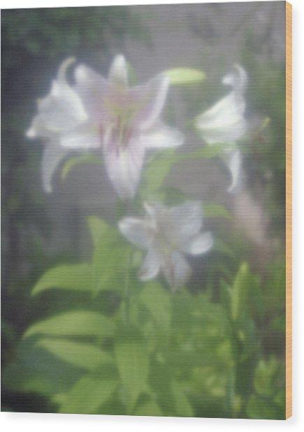 Glowing Spring Wood Print