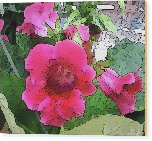 Gloxinia Wood Print