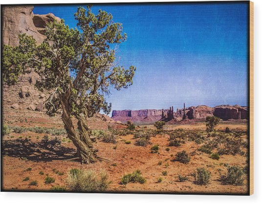Gnarled Utah Juniper At Monument Vally Wood Print