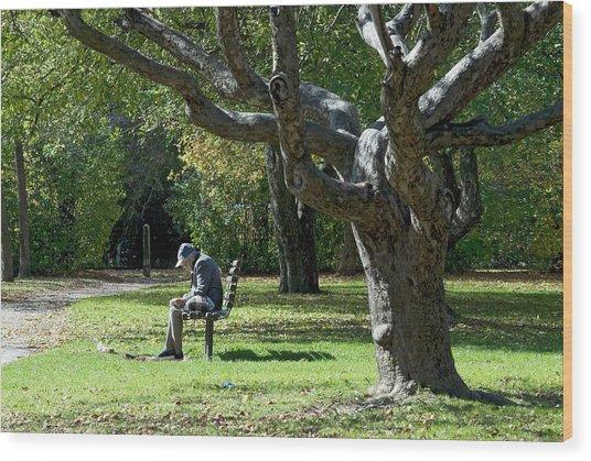 Gnarly Tree Solitude Wood Print