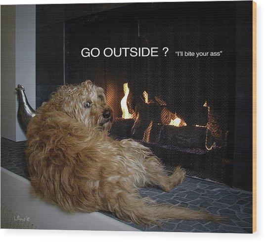 Go Outside ? Wood Print