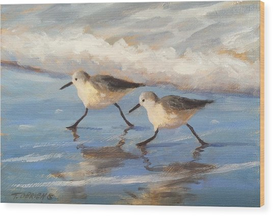 Go Sandpipers Wood Print by Tina Obrien