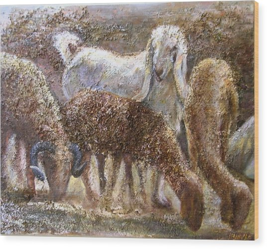 Goat With Sheep Wood Print by Sylva Zalmanson