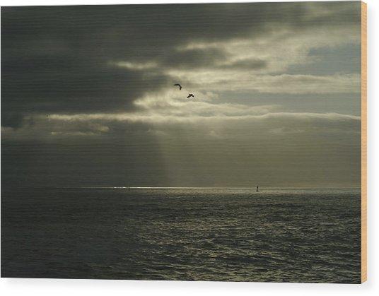 God's Gulls Wood Print