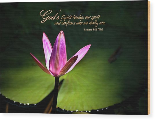 God's Spirit Wood Print