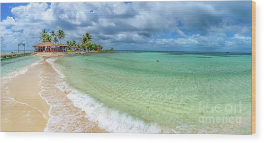 Goff's Caye Belize Pano Wood Print