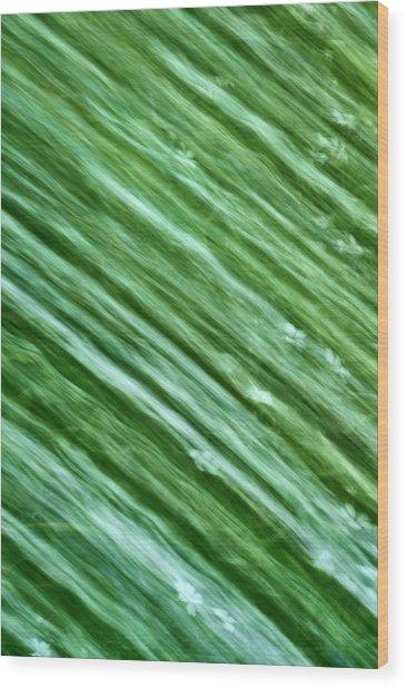 Going Green Wood Print