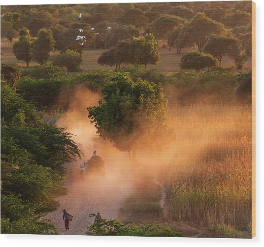 Wood Print featuring the photograph Going Home At Sunset by Pradeep Raja Prints