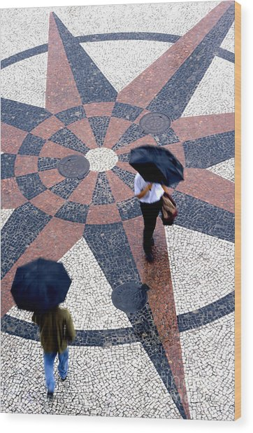 Going North Going South - Umbrellas Series 1 Wood Print by Carlos Alvim
