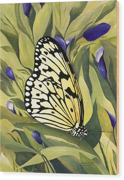 Gold Butterfly In Branson Wood Print