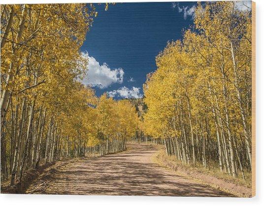 Gold Camp Road Wood Print