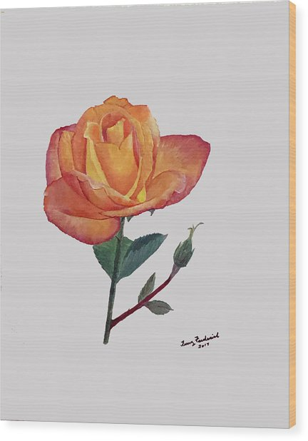 Gold Medal Rose Wood Print