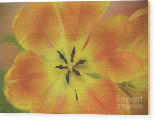 Gold Tulip Explosion Wood Print
